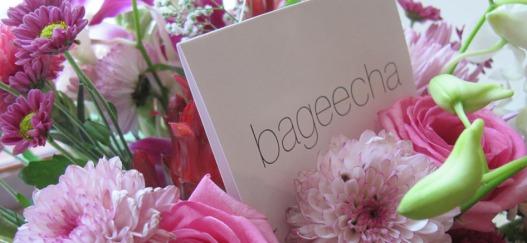 Bageecha 1