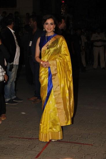 Dia Mirza in a Benarasi Silk Saree
